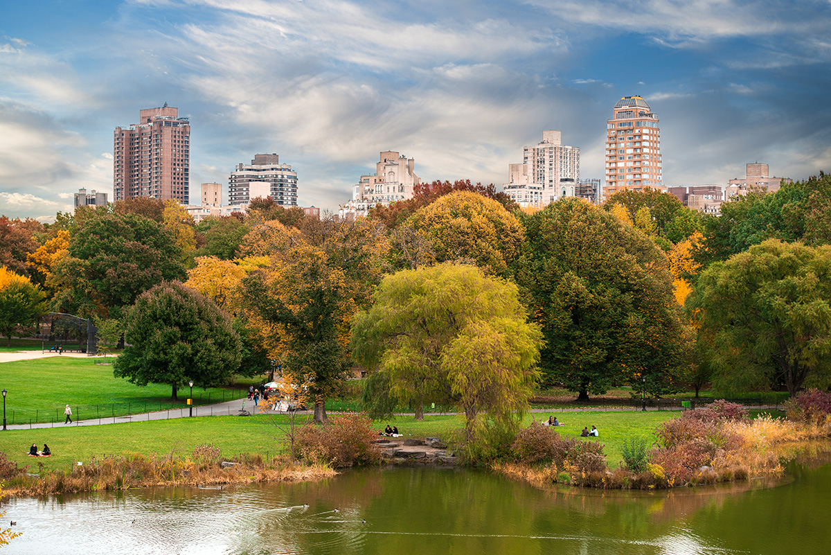 Top places to visit in new york nikita starichenko for Best places to go in central park